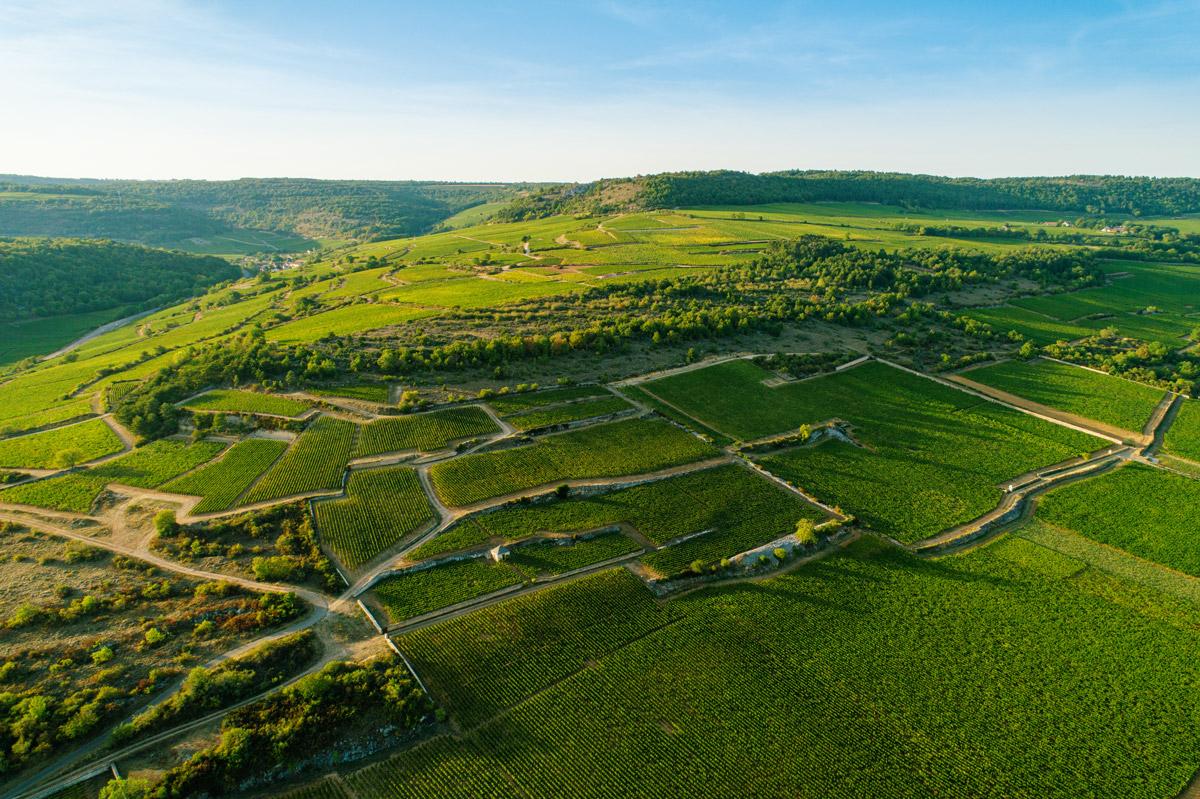 Photographie Côte de Beaune - Bourgogne